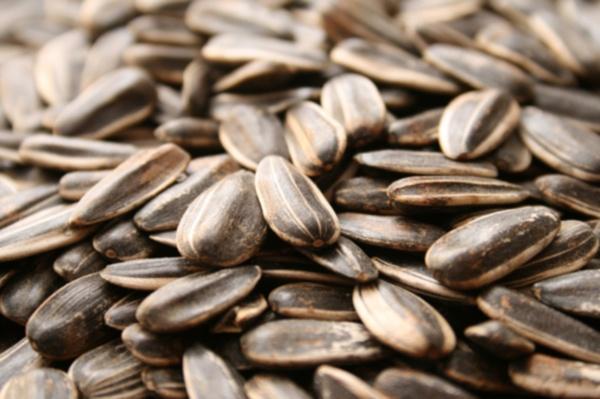семечки понижают холестерин